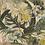 Thumbnail: Pale Orchids