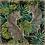 Thumbnail: Jungle Jaguars