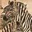 Thumbnail: Stripes On Stripes