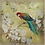 Thumbnail: Classic Macaw