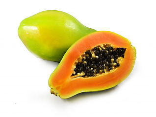 Golden Papaya
