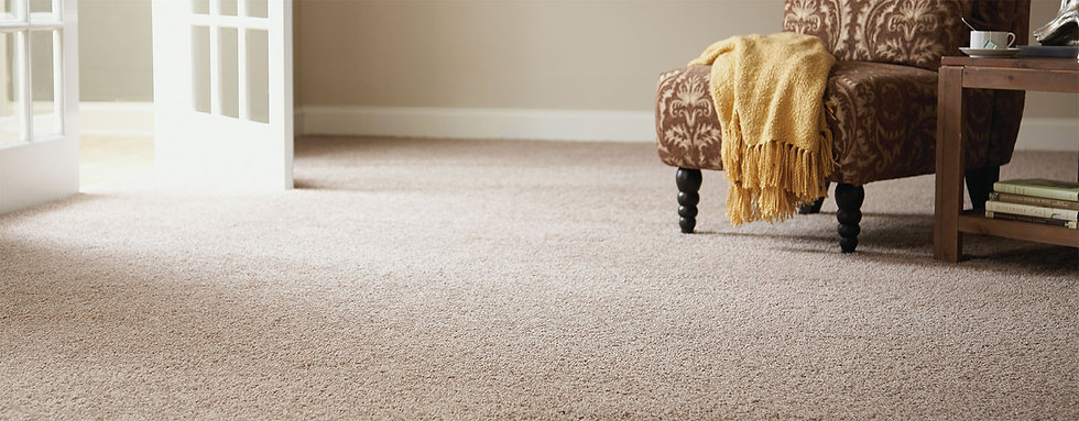 sacramento carpet cleaning company, roseville carpet cleaning company