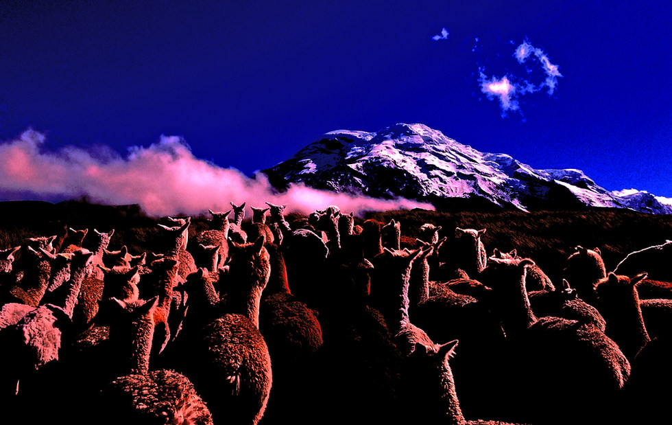 1- Solstice (Equateur)