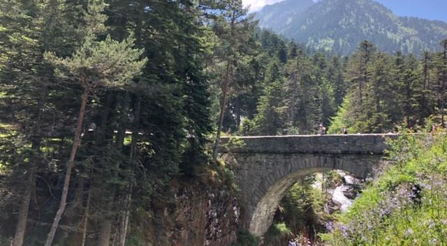 Son Pont d'Espagne