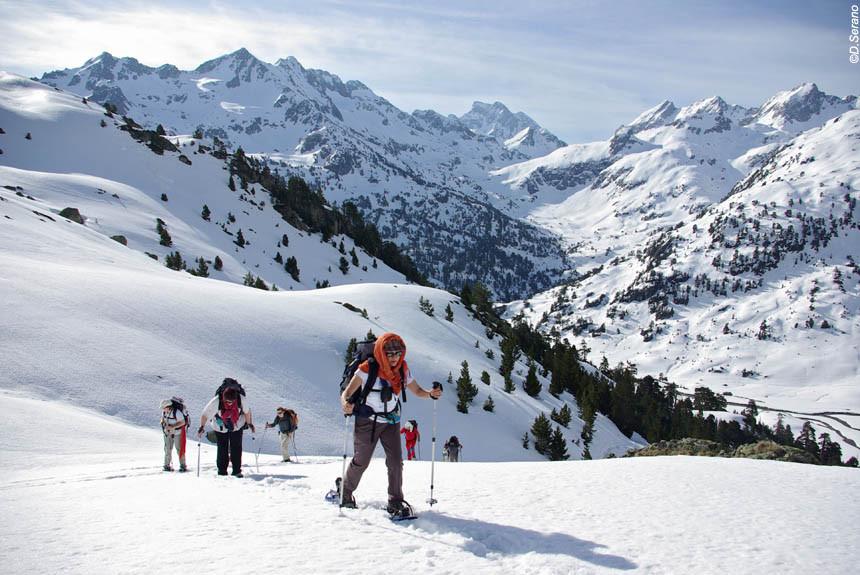 Raquettes et Ski de fond
