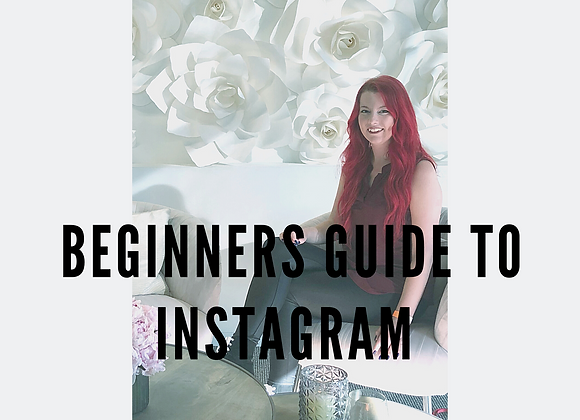 Beginner's Guide to Instagram E-Book