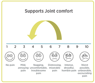 CHS_Chart Graphics_Supports Joint Comfor