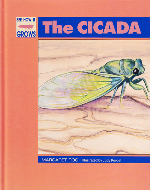 See how it grows The Cicada