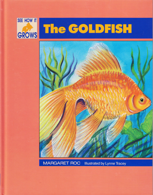 See how it grows The Goldfish