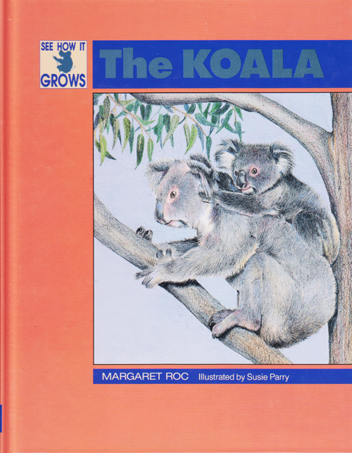 See how it grows The Koala