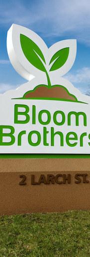 BloomPhoto.jpg