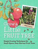 Grow A Little Fruit Tree.jpg