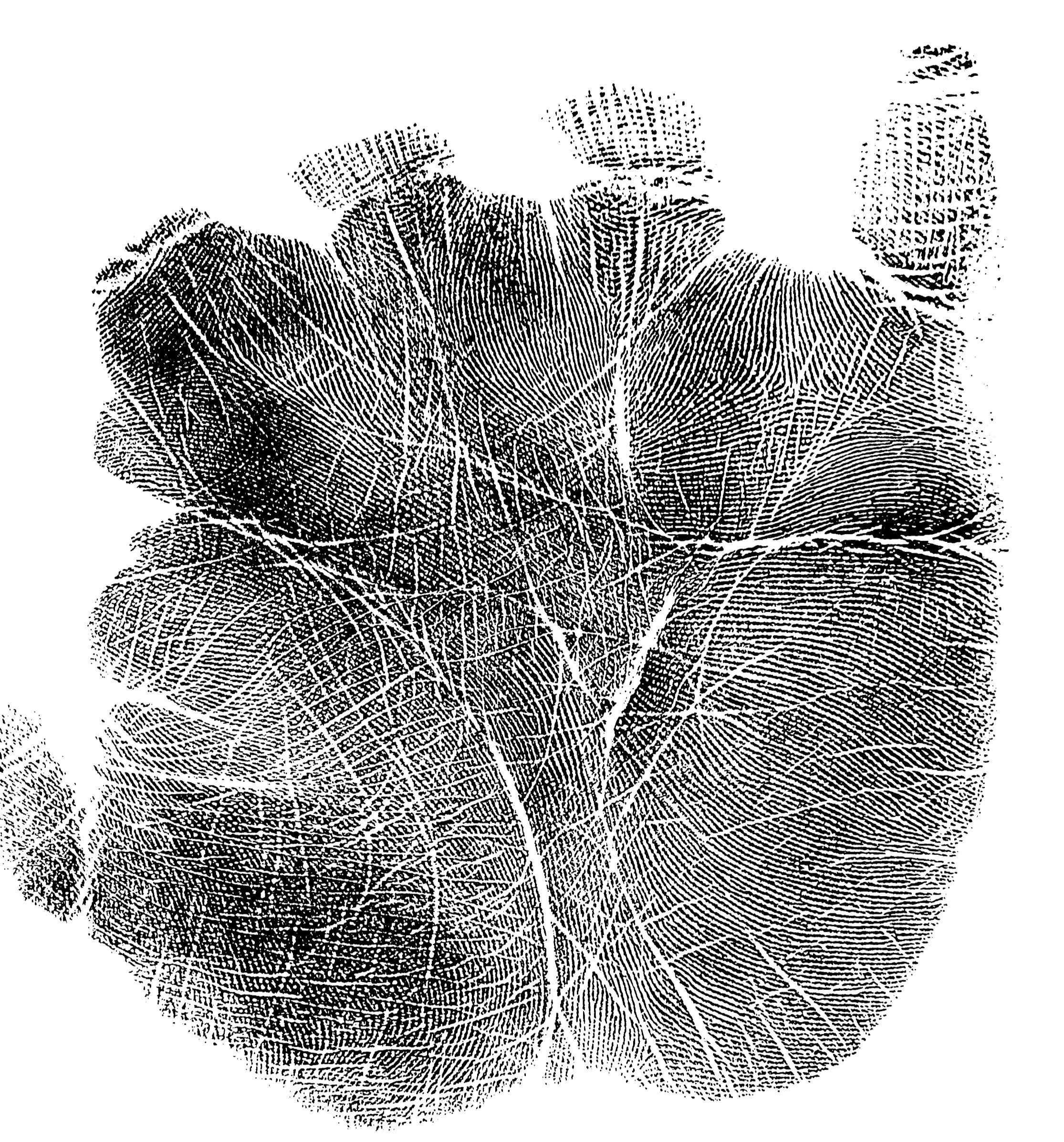 Full Finger and Palm print set