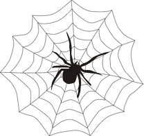 spider-spiders-web-spiderweb-cobweb-cree