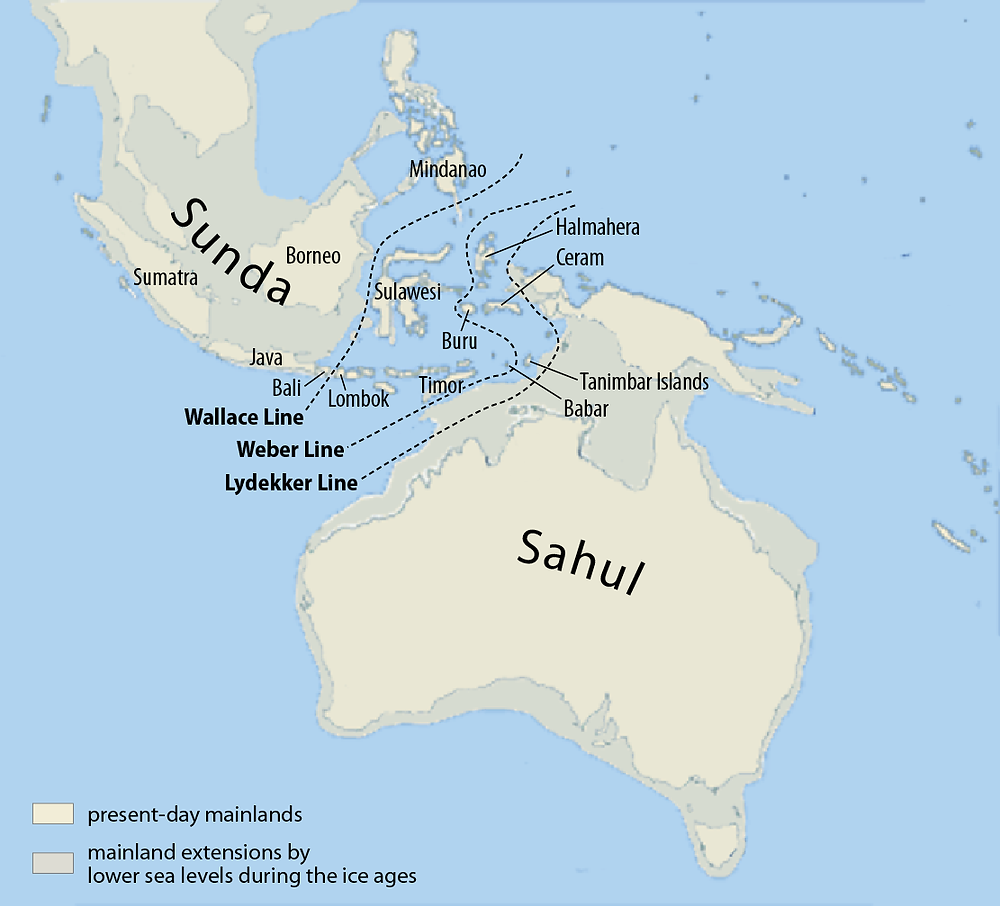Sundaland, the massive sunken continent from the last ice age