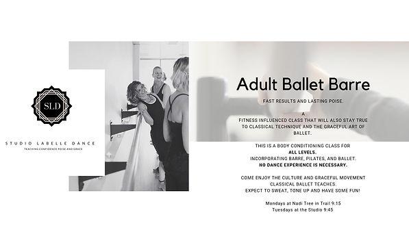 Adult Ballet Barre.jpg