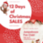 2019 12 Days of Christmas (4).png