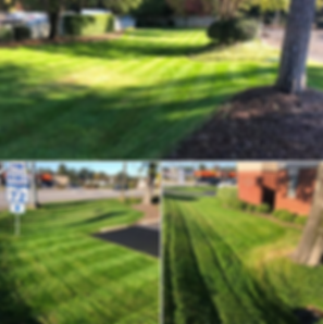 kinard animal hospital, landscaping, lawn care, turf care, grass cutting, lawn mowing, greenwood sc, 29649, lawn care greewood, commercial landscaping