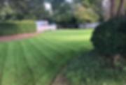 Screen Shot 2018-10-14 at 3.08.19 PM.png