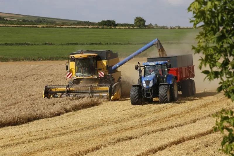 tarım ürünlerinde artış