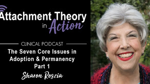 Sharon Roszia: The Seven Core Issues in Adoption and Permanency - Part 1