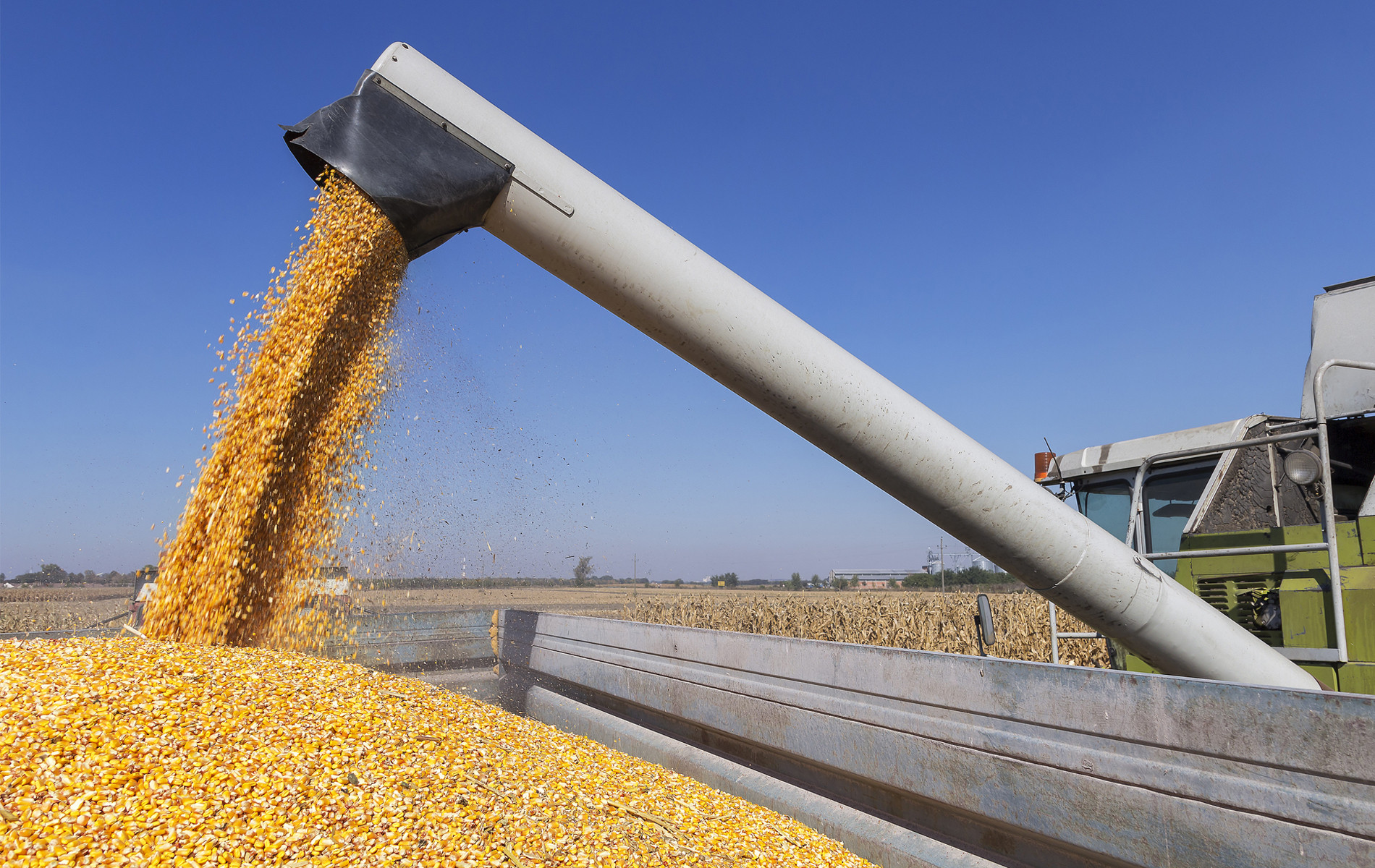 Agricultural Partnership.jpg