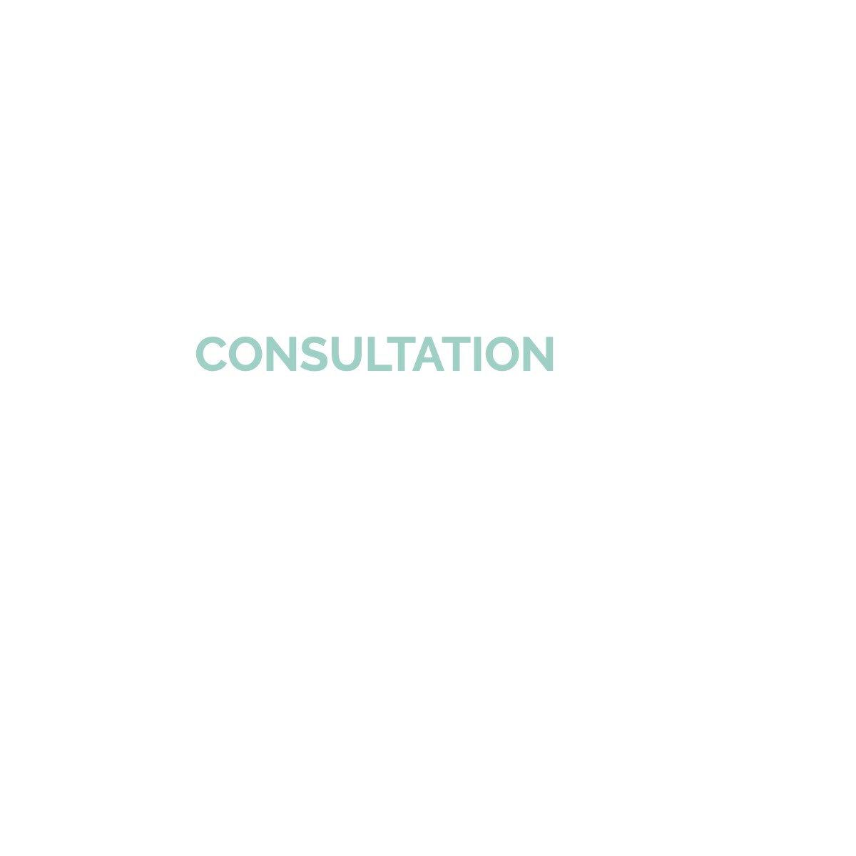 College Admissions Consultation