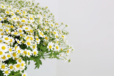 bouquet de margeuritte