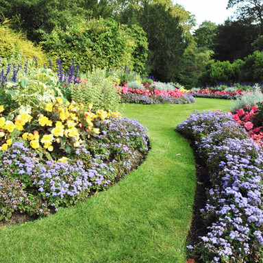 Awesome Landscape Concepts Landscape Planting Design