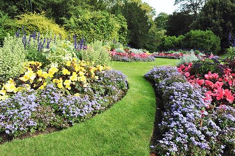 Luscious Flower Garden