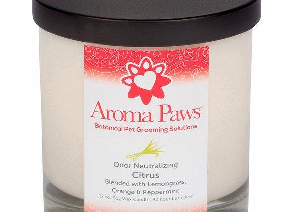 Candle Pet Odor Neutralizing Citrus