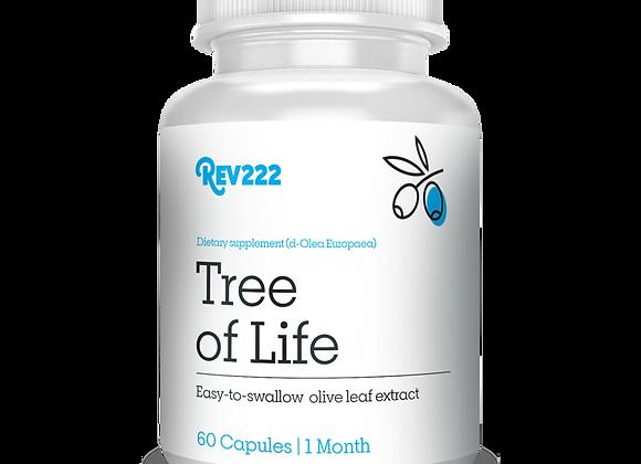 Tree of Life Immune 60ct
