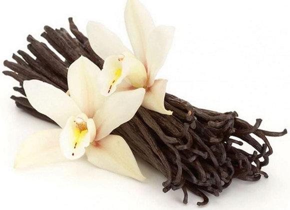 Vanilla Absolute Essential Oil