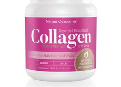 Collagen Powder Unflavored