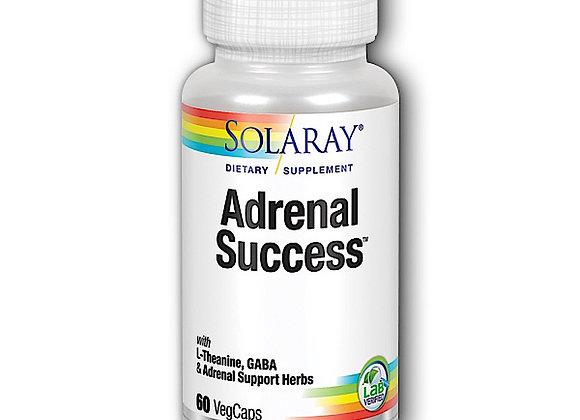 Adrenal Success, 60ct