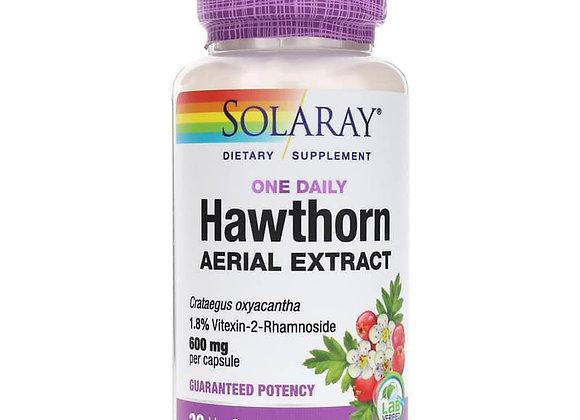 Daily Hawthorn 600mg, 30ct