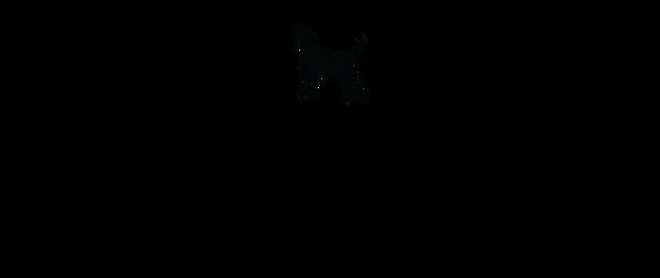 IF_logo_black.png