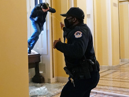 A lesson in physical security of window openings from the attack on the US Capitol.