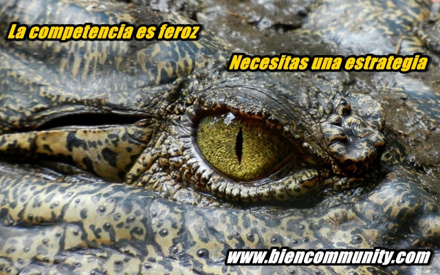 competencia-tienda-online-Badajoz