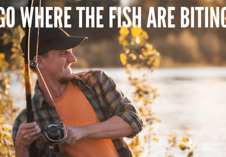 Go Where the Fish are Biting