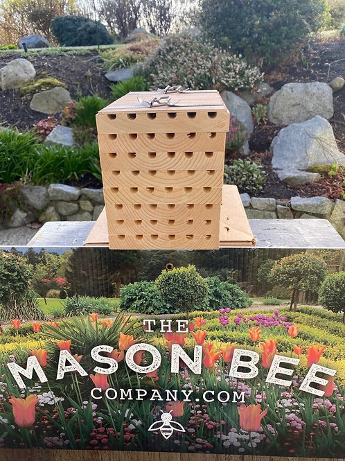 Mason Bee Condo