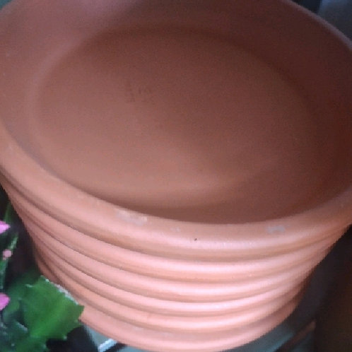 terracotta trays
