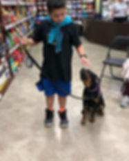 Family Dog 1 at _petfoodexpress in Mount