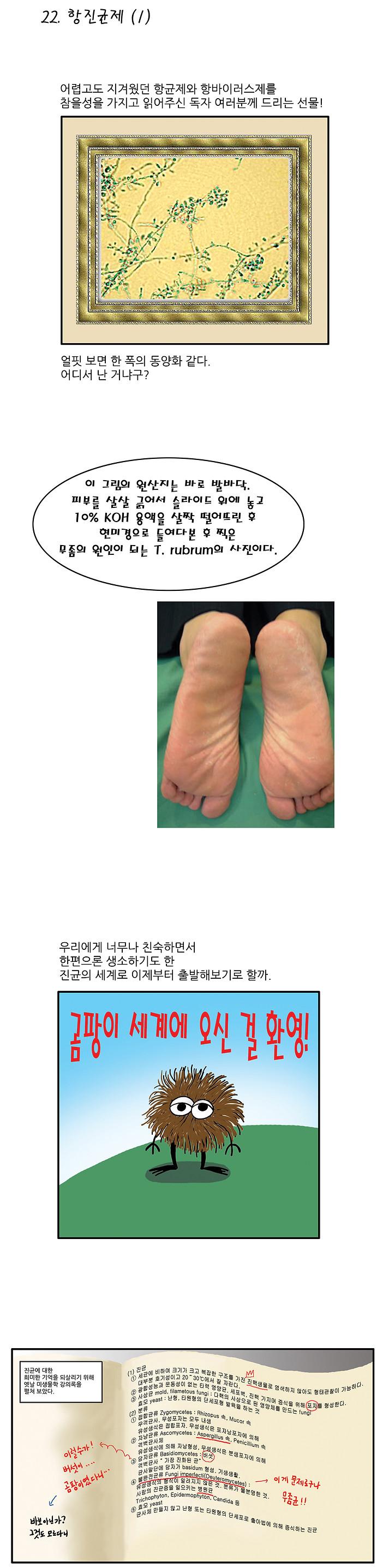 만화 항생제 항진균제 01-1 copy.jpg