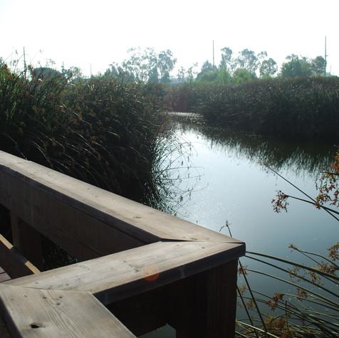 Bixby Marsh