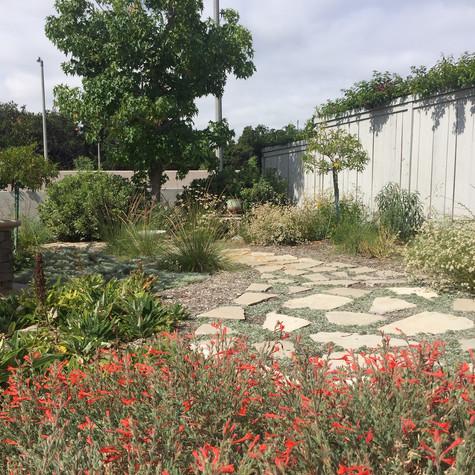 Irvine Low Water Garden
