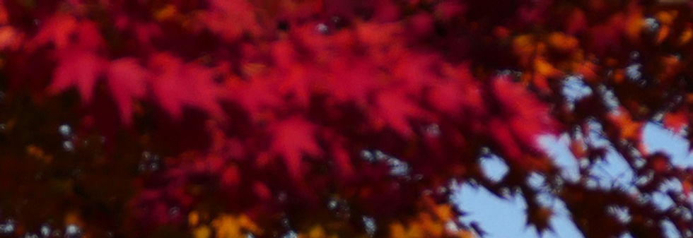 379+盛岡市_岩手山+高松の池①_(冬).jpg