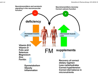 Fibromyalgia and nutrition