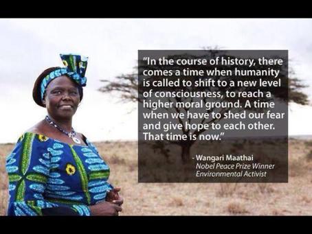 Quote of the day - by Wangari Maathai