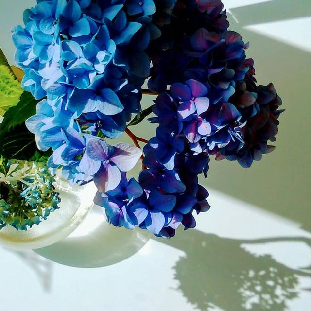 季節の花を飾ることも・・・
